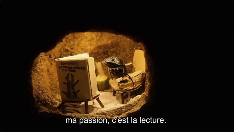 """Photo du bousier dans sa galerie lisant """"Souvenirs entomologiques"""" de J;-H. Fabre"""